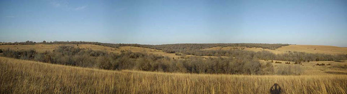 Rolling hills on Kansas hunting land
