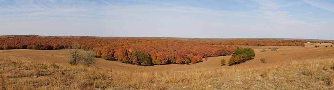 Kansas hunting land